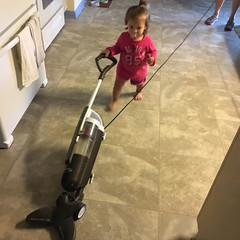 """Let's try vacuuming • <a style=""""font-size:0.8em;"""" href=""""http://www.flickr.com/photos/75865141@N03/29390954976/"""" target=""""_blank"""">View on Flickr</a>"""