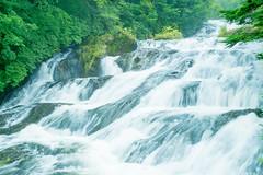 Waterfall of crown (sonica@2006) Tags: waterfall crown full length is 210 meters the width 10 one waterfalls representing nikko japan xm1 xf35mm fujifilm fujinon