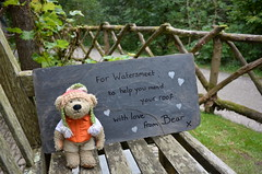 Bless 'im (Sa//y) Tags: watersmeet exmoor devon nationaltrust lynvalley woodlands rivergorge teagarden teddy bear