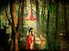 fairytale forest (AlicePopkorn) Tags: flowers light castle fairytale forest mushrooms creativity magic creativecommons mysterious imagination rays wonderland magical naturespirits alicepopkorn creativephotocafe