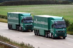 Lannutti Volvo FH pair (gylesnikki) Tags: green glass truck transport artic lannutti