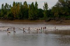 Mascaret Podensac 09/2012 (Val_tho) Tags: canon river eos thomas wave garonne canoneos 2012 fleuve valadon gironde canonef70200mmf28lusm valtho canon70200f28l 70200mmf28 400d mascaret eos400d canon70200mm28lusm podensac moskitom