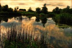 Elfin land. (gos1959) Tags: lake reflex pond jammerbugt gynther mygearandmebronze mygearandmesilver mygearandmegold gamesweepwinner biersted pregameduelwinner rememberthatmomentlevel4 rememberthatmomentlevel1 sunrays5 rememberthatmomentlevel2 rememberthatmomentlevel3
