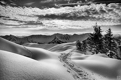 """Yeah, I'm walking,"" (gregor H) Tags: trees winter terrain mountain snow cold nature walking landscape austria shadows cloudy spirit tracks wintertime snowshoes contour vorarlberg snowhill laterns mountainair snowcrystals"