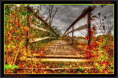 Threshold (ScottElliottSmithson) Tags: autumn color fall canon scott eos vanishingpoint woods seasons footbridge michigan fallcolors dramatic autumncolors michiganfavorites 7d hdr smithson brdige algonac stclaircounty michiganstateparks michiganstatepark dramaticcolor fallinmichigan michigannature autumninmichigan eos7d stjohnsmarsh algonacstatepark mygearandme mygearandmepremium mygearandmebronze dtwpuck scottsmithson me2youphotographylevel1 scottelliottsmithson