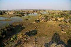 View From Above XIV (www.mattprior.co.uk) Tags: adventure adventurer journey explore experience expedition safari africa southafrica botswana zimbabwe zambia overland nature animals lion crocodile zebra buffalo camp sleep elephant giraffe leopard sunrise sunset