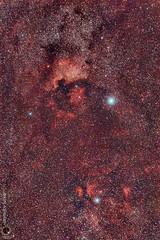 The Cygnus Cloud Complex (Janmejoy Sarker) Tags: ngc 7000 the cygnus cloud complex north american pelican nebulae nikon d7000 unmodded stock nikkor 85mm celestron 125uhclprfilterlprpollutionastrophotographynebulaskywatcher star adventurer deepskystackerpixinsight le photoshop dss light astrometrydotnet:id=nova1672754 astrometrydotnet:status=solved
