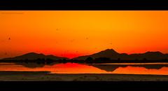 Salt Lake #3 (Thierry Hudsyn) Tags: panasoniclx100 kos tigaki saltlake sunset goldenhour reflections reflets widescreen cinematic cinematicphotography landscape paysage