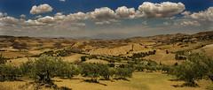the real Sicily (rinogas) Tags: rinogas italy sicily mazzarino