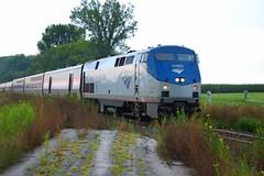 Amtrak's Cardinal Enroute to Chicago_0018 (roadmaven) Tags: amtrak cardinal lizton indiana