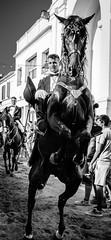 InTheEyesOfTheBeast (focusblurred) Tags: blackhorse 35mm menorca rearing blackwhite bw d5100 fiesta horse monochrome nikon stallion