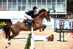 IMG_9397 (Amir Hebib) Tags: horse hst jumping eskilstuna sundbyholm black white monochrome sverige sweden sdermanland sm svenskt