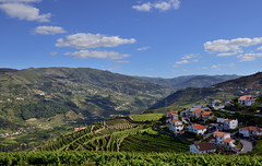 Douro Valley, Portugal (Alona Azaria) Tags: portugal douro vineyards green porto wine region valley nikond800 nikkor nikon d800 bluesky cloud clouds