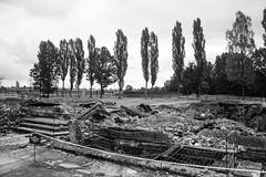 20130916Auswitch II Birkenau10 (J.A.B.1985) Tags: auswitch poland polonia iiww worldwar iigm guerramundial holocaust holocausto soah