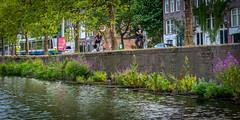 nld1_11 (L'esc Photography) Tags: amsterdam amsterdamcentrum amsterdamcitycentre centrum holland nld netherlands prinsengracht