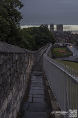 york 21-8-16 (law-photography2014) Tags: york northyorkshire leeward leewardatlawphotography lawphotography yorkminister canon6d canon1740l