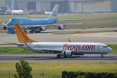 """""""Nehir"""" Pegasus Airlines TC-ARP Boeing 737-82R Winglets cn/40727-3652 @ Buitenverldertbaan EHAM / AMS 07-06-2016 (Nabil Molinari Photography) Tags: nehir pegasus airlines tcarp boeing 73782r winglets cn407273652 buitenverldertbaan eham ams 07062016"""
