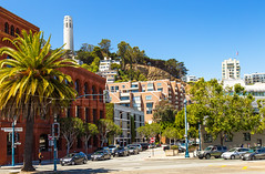 View of Coit Tower (leonardo.mangia) Tags: sanfrancisco coittower california westcoast usa america palms summer holiday travel colorful colors bluesky blue view buildings pier sanfranciscopiers canon canon6d canonphotography canonphoto