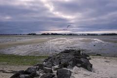al tramonto (MoSe75) Tags: bretagna francia xt1 landscape seascape sea natura paesaggio oceano faro lighthouse colors
