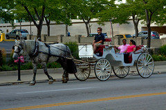 Carriage Ride Downtown Milwaukee IMG_7391 (www.cemillerphotography.com) Tags: midwest wisconsin city metropolis transportation street park lawenforcement officers