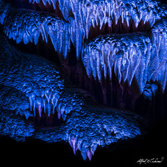 Cookie Monster - HFF (Alfred J. Lockwood Photography) Tags: alfredjlockwood nature abstract carlsbadcavernsnationalpark cave cavern nationalpark newmexico limestone
