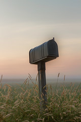 Mailbox in the fog (Mike Matney Photography) Tags: 2016 canon eosm horseshoelake illinois midwest september fog mailbox sunrise water pontoonbeach unitedstates us