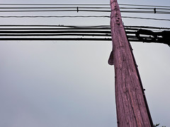 pole lines (Bri Lipford) Tags: pole rule thrids thirds lines example outside