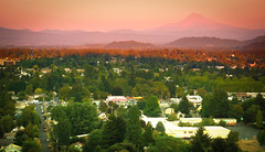 rose city (Xuan Che) Tags: park city pink autumn trees sunset mountain snow color green oregon river portland landscape volcano peak september east tabor cascades mthood pacificnorthwest 2012 panasoniclx2 gettycandidate