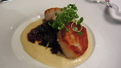 pan-seared Sea Scallops (gateway10027) Tags: scallops seafood appetizer scallop finedining seared 1789 panseared 1stcourse seascallops seascallop braisedkale diverscallop parsnippuree pansearedseascallops 1789restaurant finedininginwashingtondc oxtailragut