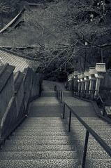_DSF4054_1 (oncoinco0920) Tags: street bw japan temple photography photo step tokushima x100