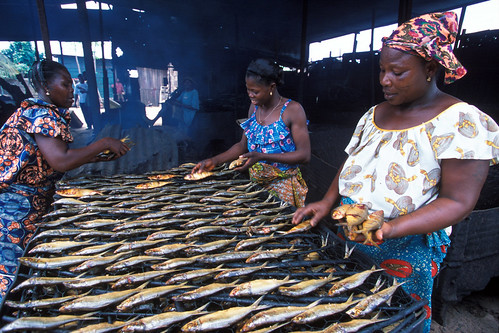 Women fish processors in West Africa. Photo by Minkoh, FAO/SFLP Project.