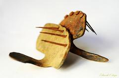 herraduras (J.Eduardo Ortega) Tags: toro vaca buey herradura hierro callos xido callo herraduras