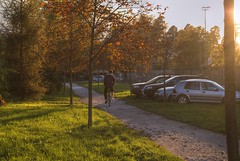 Sunset (Sareni) Tags: autumn trees light sunset sun man tree fall cars grass car evening october cyclist sundown slovenia tabor slovenija maribor 2012 twop sareni