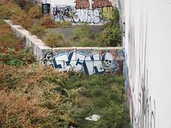 Ich (carnagenyc) Tags: nyc newyork brooklyn graffiti yme nome ich ichabod sy