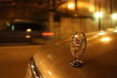 Stand-Up (Flint Foto Factory) Tags: auto camera city november autumn light urban chicago motion reflection fall car night sedan work emblem evening early illinois movement automobile gm downtown afternoon nocturnal loop coworker jackson cadillac american farewell hood late intersection dts deville luxury gettogether 2012 dearborn generalmotors 2000s sooc straightoutof