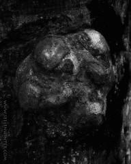 Tree Face 18 (Myrkwood666) Tags: wood bw tree monochrome strange face forest blackwhite pattern zwartwit boom odd figure mysterious sw curious creature schwarzweiss bos wald baum ent enigmatic entity waldwesen myrkwood666
