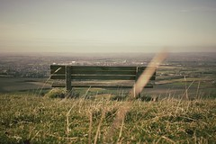 Bench with a View (Harry_S) Tags: leica horse white four 14 panasonic g5 micro wiltshire summilux 43 thirds 25mm westbury m43 mft