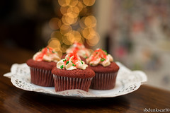 red velvet christmas cupcake (sbdunkscarl) Tags: red food brown photography cupcakes bacon yummy yum good egg velvet mcdonalds foodporn cupcake carl wilson hash foodcoma foodie mcgriddle foood foodorgasm sbdunkscarl wwwsbdunkscarlblogspotcom sbunkscarl sbdunkscarlblogspotcom