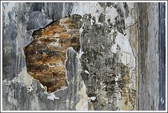 ART WALL (Polis Poliviou) Tags: life wallpaper art texture rock wall painting paint mediterranean village artistic room painted bricks cipro polis slopes zypern kypros chypre natute lefkara chipre kypr cypr cypern  kipras ciprus exemplaryshots lovecyprus republicofcyprus flickrsbestgroup    flickraward poliviou polispoliviou    cyprusinyourheart    sayprus chipir wwwpolispolivioucom yearroundisland cyprustheallyearroundisland polispoliviou2013
