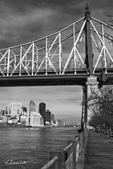 Queensboro Bridge from Roosevelt Island (Jorge Gaviria) Tags: usa manhattan eastriver queensborobridge rooseveltisland eeuu