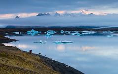 Jökulsárlón @ sunrise (03:35) (Arnold van Wijk) Tags: morning mountain lake ice water geotagged island iceland meer lagoon glacier bergen gletscher ochtend isl ijs austurland gletsjer ijsland geo:lat=6404563900 geo:lon=1618589200 k·lfafellsstadur k·lfafellsstaur