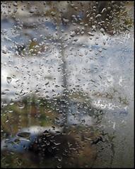 Genomskinlig Transparent (Barbro_Uppsala) Tags: sweden transparent västmanland genomskinlig fotosondag fotosöndag blåmansbäcken fs130203