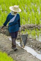 ChiangRai_5203 (JCS75) Tags: canon thailand asia asie chiangrai thailande