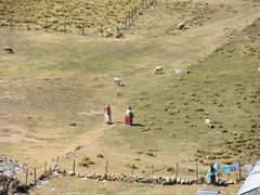 "Lac Titicaca: l'Isla del Sol <a style=""margin-left:10px; font-size:0.8em;"" href=""http://www.flickr.com/photos/127723101@N04/28520908181/"" target=""_blank"">@flickr</a>"