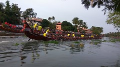 Our Thiruvonam celebration started. After 10 days we are celebrating our Thiruvonam festival. Happy Thiruvonam in advance. This  is the picture of vallam Kali ( snake boat race ) (JOMY A G) Tags: thiruvonam kerala india jomyag kochijomyjomyagjagjomyjomyagjag vallamkali snakeboatrace champakkara chambakkara jomy jag