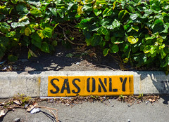 Don't Mess with the SAS (Steve Taylor (Photography)) Tags: sas only restricted parking straw twig allocated ivy sign stencil carpark black grey green yellow concrete newzealand nz southisland canterbury christchurch cbd city shadow sunny sunshine