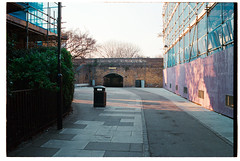 The edge of summer (Melanie Jayne Art) Tags: streetscape construction film memory photography hedges pink blue tunnel curve rubbish bin pavement
