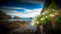 Experimental Blend (Augmented Reality Images (Getty Contributor)) Tags: canon clouds daisy flowers landscape leefilters longexposure morayshire photoshop portknockie rocks scotland seascape summer water