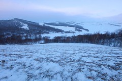 _MG_7255 (c0466art) Tags: 2015 chinese inner mogonlia grassland winter season trip travel early morning sunrise momemt cloudy blue tone mountain white snow world cold weather beautiful landscape scenery trees light canon 1dx c0466art