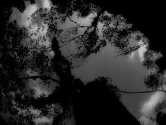 Ser parte de la naturaleza (www.sendautopica.com) Tags: shadow blancoynegro monocromtico surrealista nube cielo oscuridad perspectiva blackwhite